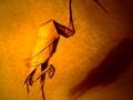 Héron cendré, origami©Sébastien Limet